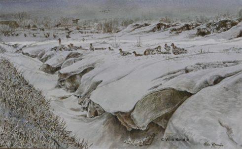 Ganzen in sneeuwlandschap