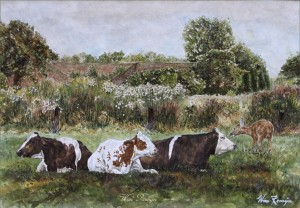 Reegeit in koeweide