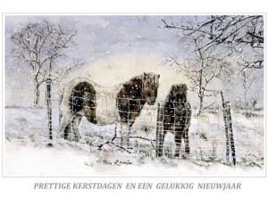 Kerstkaart Shetlanders in de sneeuw