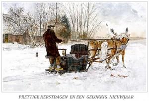 Kerstkaart Haflinger voor looike