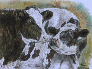 Genegenheid onder koeien