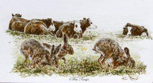 Rammelaars volgen geurspoor