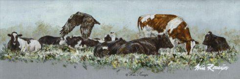 Koeien en buizerd