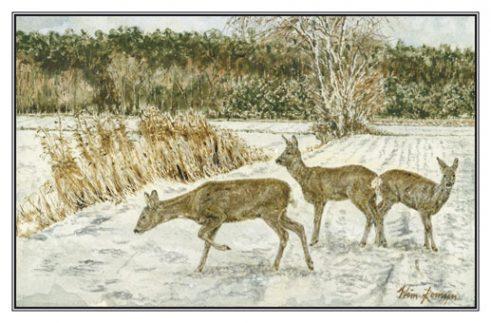 Kerstkaart Drie reegeiten aan bosrand