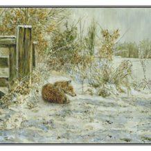 Kerstkaart Soezende vos bij landhek
