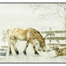 Kerstkaart Trekpaardveulen/hond in sneeuwbui bij drinkbak