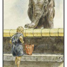 Wenskaart Jongen bij olifant