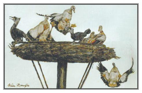 Invitatiekaart Ganzen en aalscholvers op nest