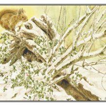 Kerstkaart Rode eekhoorn