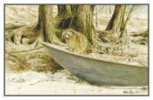 Kerstkaart Wasbeer aan rivieroever