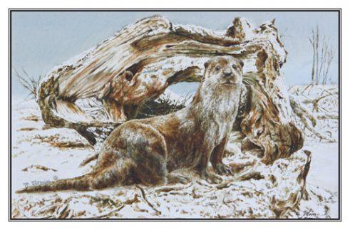 Kerstkaart Otter bij riviermonding