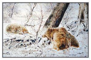 Kerstkaart Twee beren in winterrust (geeuwend)