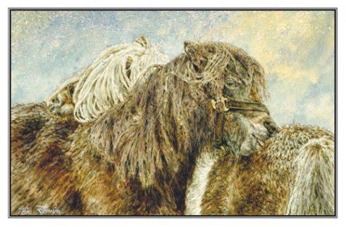 Kerstkaart Twee noppende Shetlanders in sneeuwbui