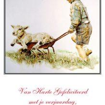 Verjaardagskaart (kind) Jongen met schapenlam