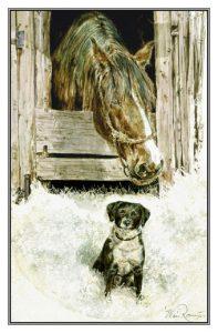 kerstkaart hond en paard in open stal