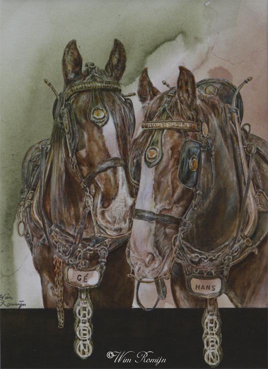 Brouwerspaarden