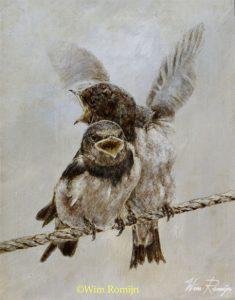 Jonge zwaluwen op wilanddraad