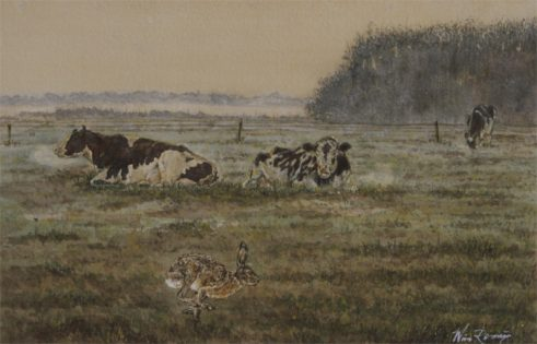 Spurt in de koeiweide